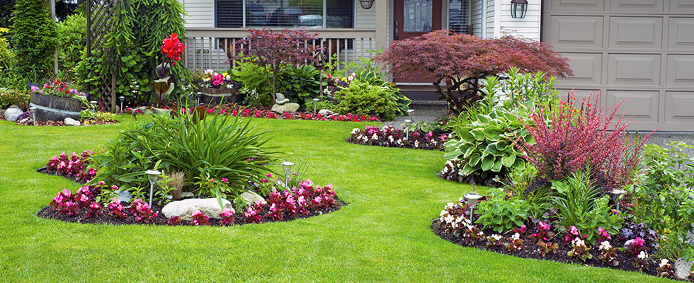 Many Instant Lawn & Landscaping 3