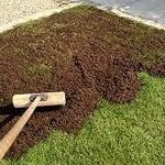 Many Instant Lawn & Landscaping 10