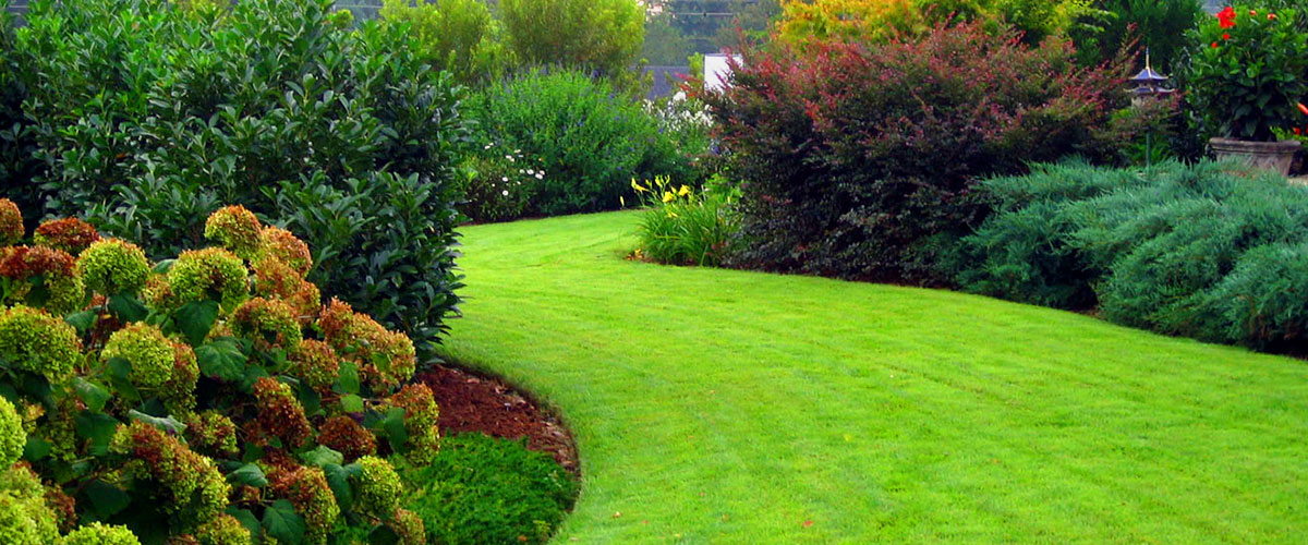 Many Instant Lawn & Landscaping 1