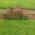 Many Instant Lawn & Landscaping 9